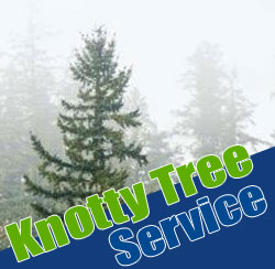 Tree_Service_Puyallup